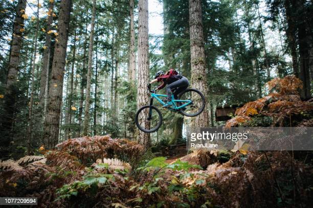 woman mountain biking on forest trails - mountain bike stock pictures, royalty-free photos & images