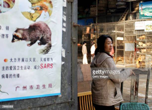 Woman moves a chair next to a propaganda poster that promotes the killing of civet cats, cockroaches and rats at the Xinyuan wild animal market...