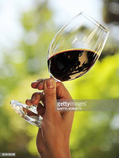 A woman observes wine by holding the glass up to the light during the Grape Harvest Fetival n Santa Cruz epicenter of the Colchagua valley some 160...