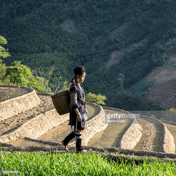 Woman of Black Zhou hill tribe next to rice paddy