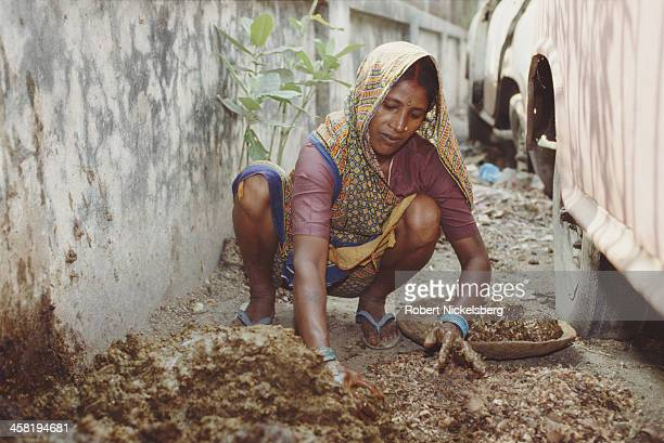 A woman of the lowest caste makes cakes of fuel out of dung in Bihar India 28th October 1991