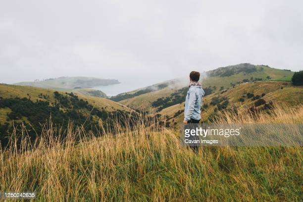 woman on a blue shirt looking at the scenery, banks peninsula, nz - christchurch new zealand stock pictures, royalty-free photos & images