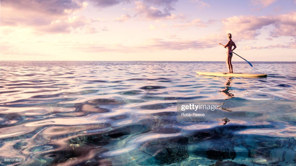 A woman on a standup paddleboard on the ocean : Stock Photo