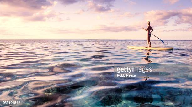 a woman on a standup paddleboard on the ocean - robb reece stock pictures, royalty-free photos & images