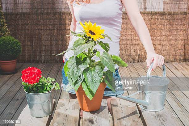 Woman on a terrace watering plants