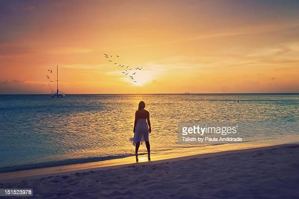 woman on beach - 白のドレス ストックフォトと画像