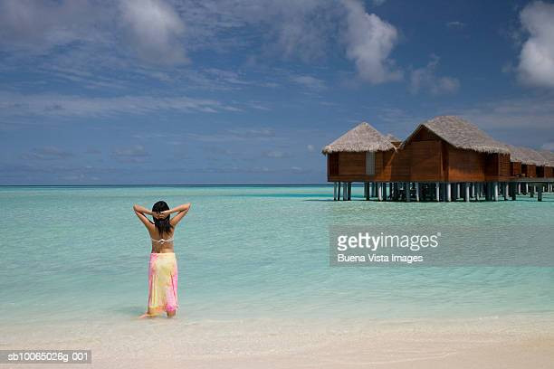 woman on beach, rear view - male maldives stock pictures, royalty-free photos & images