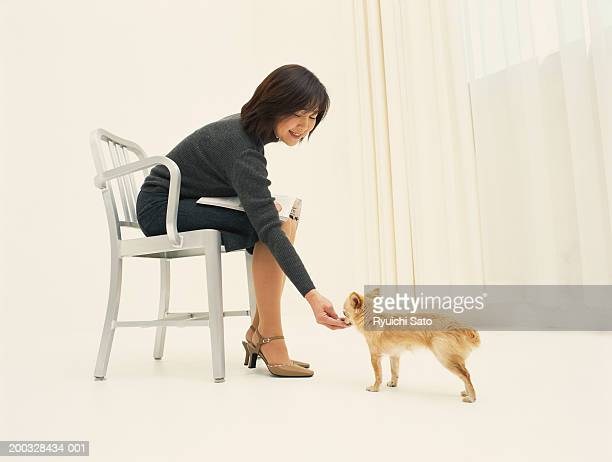 Woman on chair feeding puppy