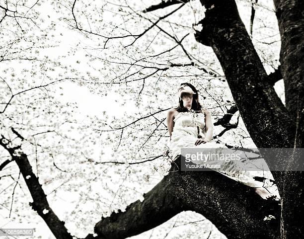 Woman on cherry tree