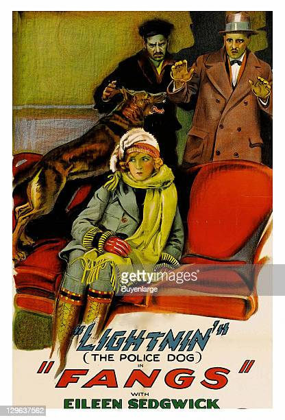 Woman on couch is protected by German Shepherd on a poster that advertises the movie 'Fangs' 1926