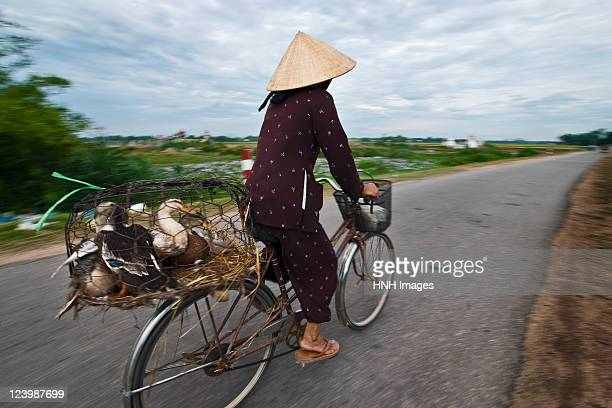 Woman on cycle with flock of birds in cage
