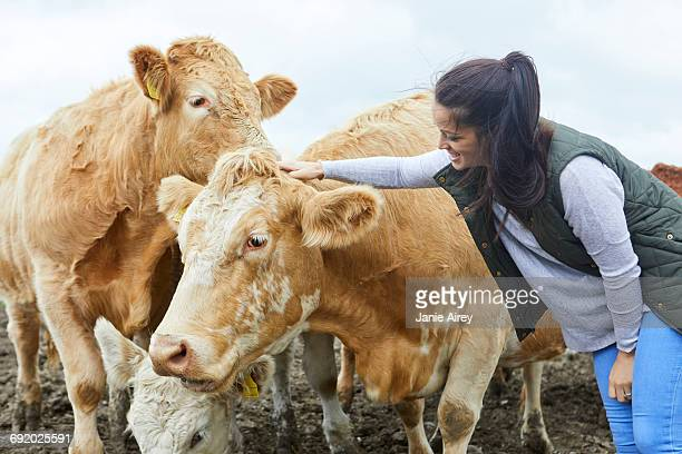 Woman on farm stroking cow