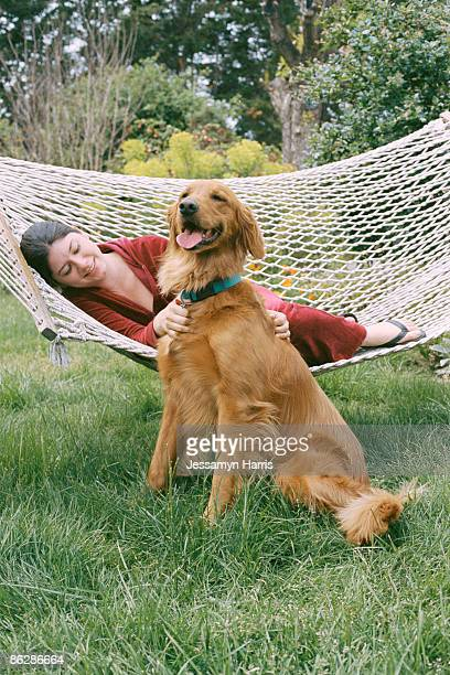 woman on hammock petting dog - jessamyn harris stock pictures, royalty-free photos & images