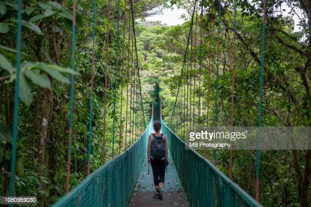 woman on hanging bridges - costa rica stock-fotos und bilder
