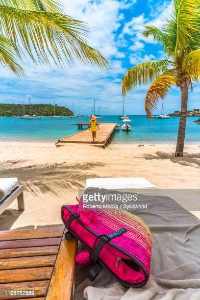 woman on jetty on caribbean sea, antilles - antigua & barbuda stock pictures, royalty-free photos & images