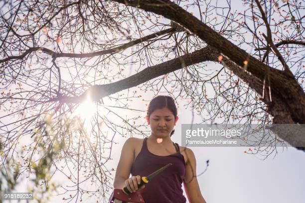 Sah Frau auf Leiter Baum mit Hand beschneiden wird vorbereitet