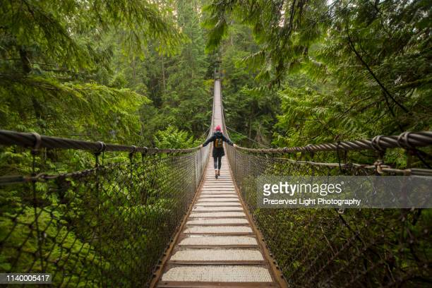 woman on lynn canyon suspension bridge, north vancouver, british columbia, canada - suspension bridge stock pictures, royalty-free photos & images