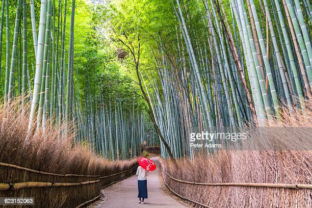 woman on path through bamboo forest, sagano, japan - kyoto city stock pictures, royalty-free photos & images