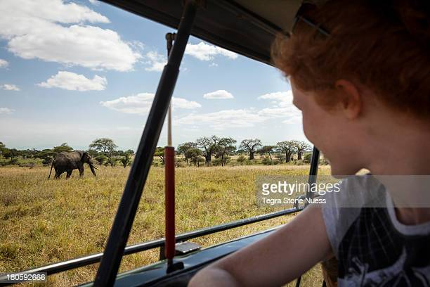 A woman on Safari watches an elephant.