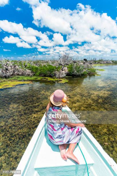 woman on tour boat, frigate bird sanctuary, barbuda, caribbean - rookery stock pictures, royalty-free photos & images
