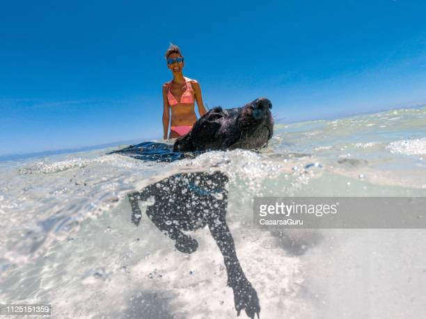 woman on tropical vacations enjoying summer days with her dog - dog days of summer stock pictures, royalty-free photos & images