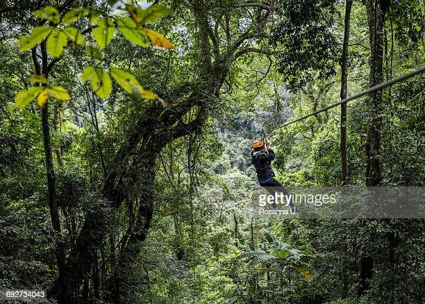 Woman on zip wire in forest, Ban Nongluang, Champassak province, Paksong, Laos