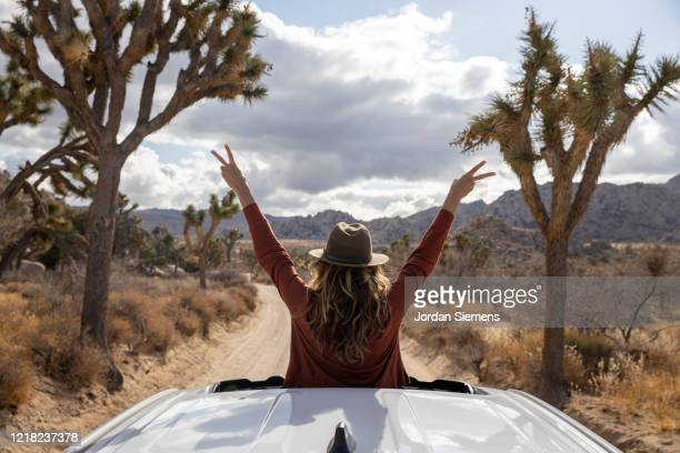 a woman out the sunroof of her car taking in the beautiful scene in joshua tree. - california stock pictures, royalty-free photos & images
