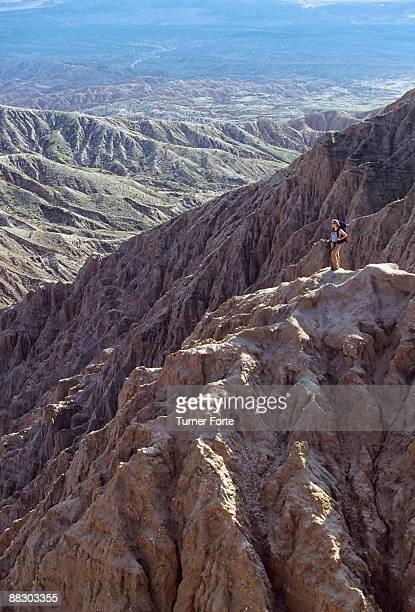 Woman overlooking Carrizo Badlands, Anza-Borrego Desert State Park, Borrego Springs, California