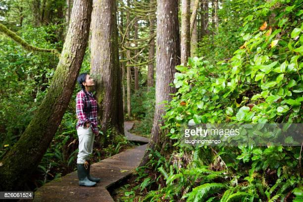 woman pacific rim national park reserve vancouver island - foresta temperata foto e immagini stock