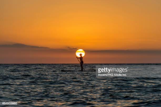 Woman paddle boards in open sea, sunrise