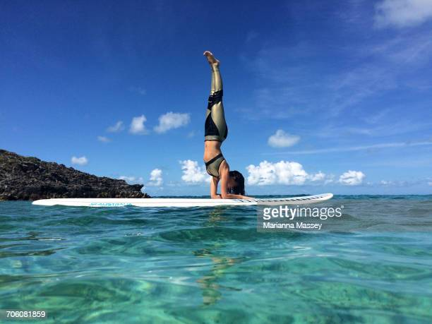 a woman paddle boards in the caribbean - paddleboard stock photos and pictures