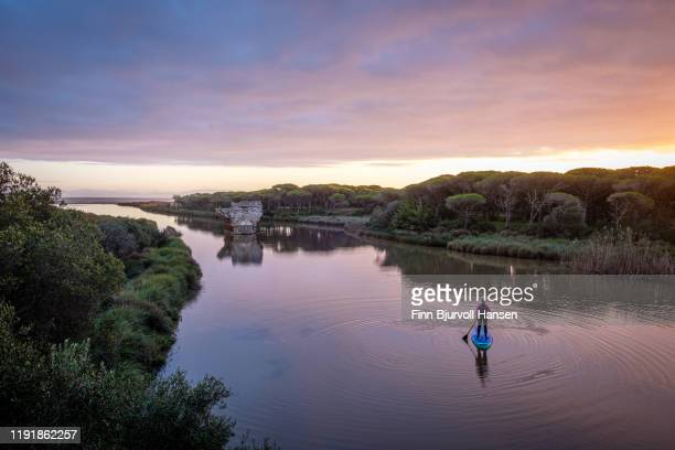 woman paddleboarding at sunset on the river rio jara in spain, atlantic oacean in the background - finn bjurvoll stock photos and pictures