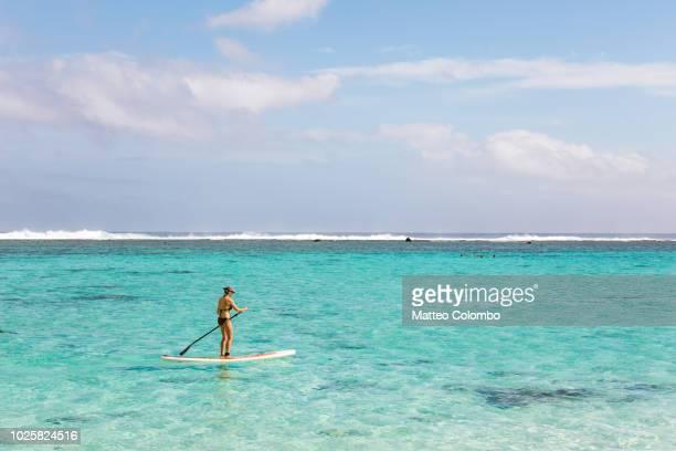woman paddleboarding in rarotonga, cook islands - rarotonga foto e immagini stock