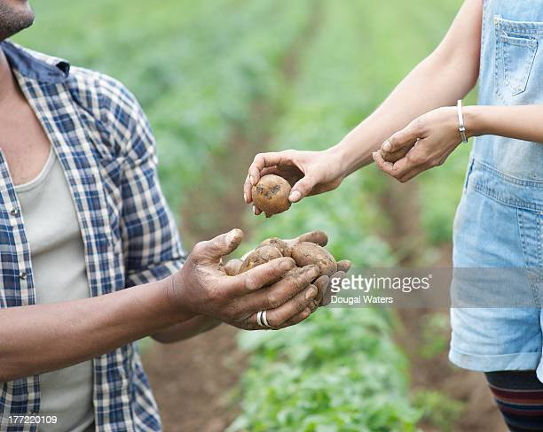 Woman passing potatoes to man on farm.