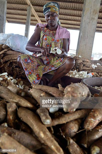 A woman peels manioc tubers in Abidjan on March 6 2015 to prepare Attieke a classic of the Ivorian food Originated from southern Ivory Coast the...