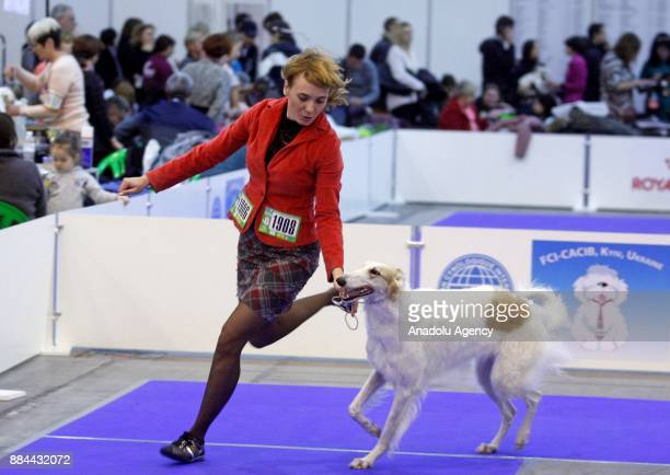 A woman performs with her dog during the International Dog Shows of all breeds 'Kievan Rus 2017' and 'The Crystal Cup of Ukraine 2017' in Kiev...