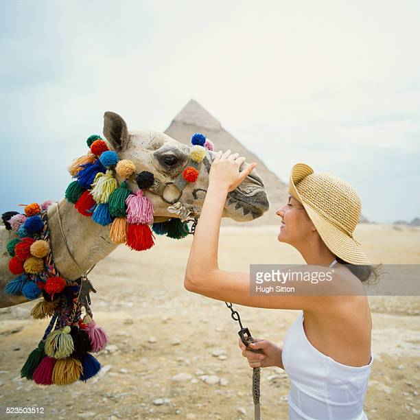 woman petting camel near great pyramid - hugh sitton stock pictures, royalty-free photos & images