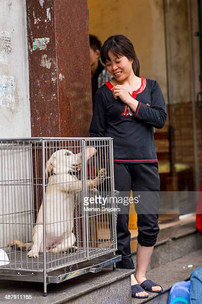 Woman petting locked dog in cage