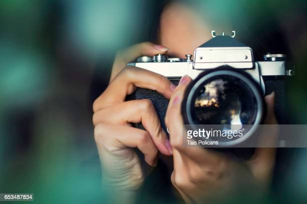 woman photographer shooting with an analog camera between tree leaves at sunset - hessen, germany - photographer stock photos and pictures
