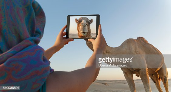 Woman photographing a camel with a tablet.