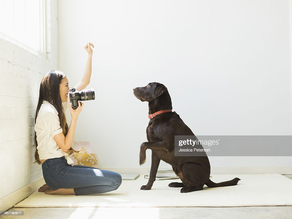 Woman photographing dog in studio : Stock Photo