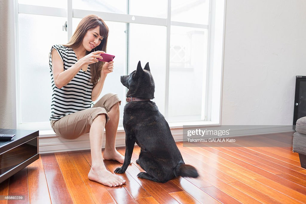 Woman photographing dog on camera phone : Stock Photo