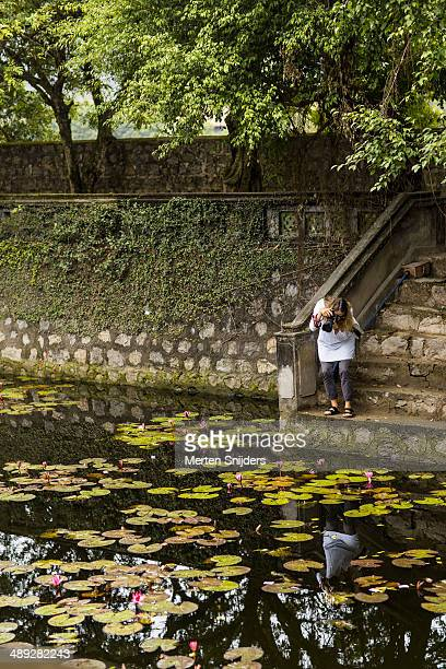 woman photographing lilly flowers - merten snijders stock-fotos und bilder
