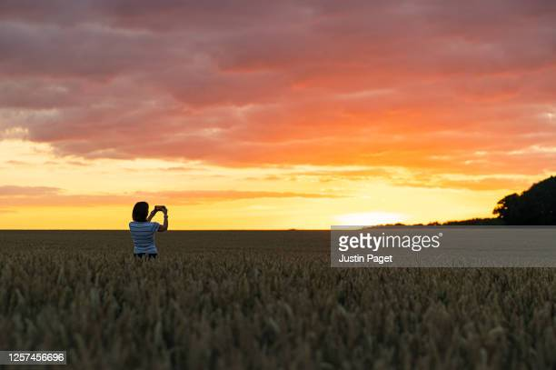 woman photographing the sunset across a field - scenics stock pictures, royalty-free photos & images