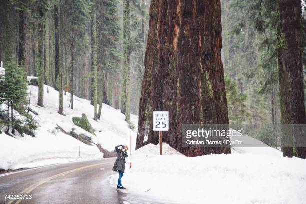 Woman Photographing While Standing On Road By Snow At Sequoia National Park