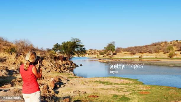 woman photographing wildlife in ruaha national park,tanzania - animal de safari imagens e fotografias de stock