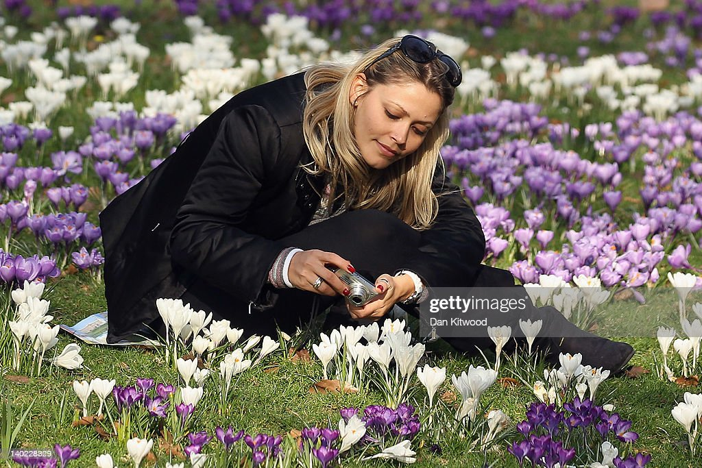 A woman photographs flowers in St James's Park on March 1, 2012 in London, England. After a recent cold snap Britain is expected to see a short period of unseasonably mild weather following one of the driest February's on record according to the Met Office.
