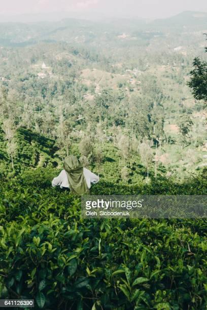 Frau Kommissionierung Tee in Sri Lanka