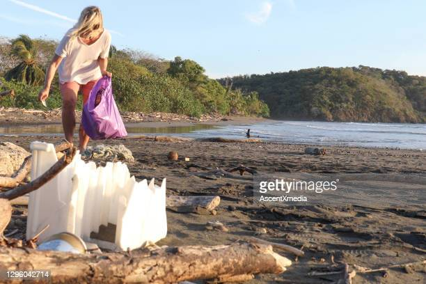 woman picks up garbage on sandy beach in the morning - pacific ocean stock pictures, royalty-free photos & images