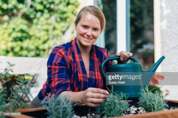 Woman planting and watering lavender.